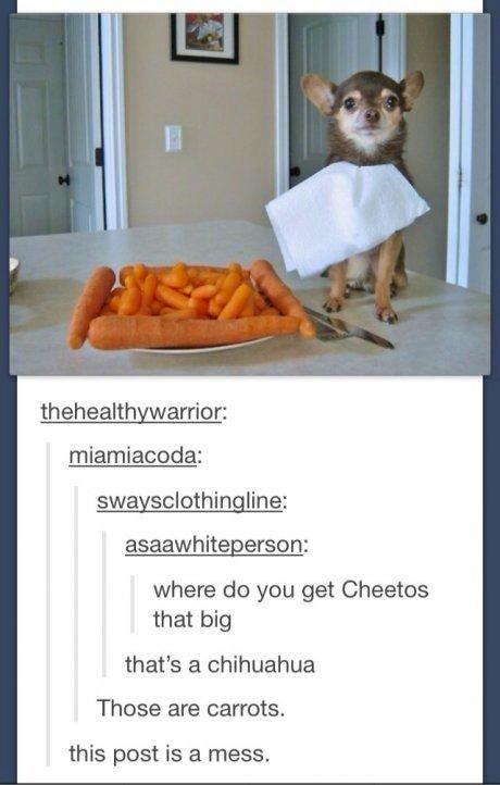 Times When Tumblr Got Weird In A Wonderful Way