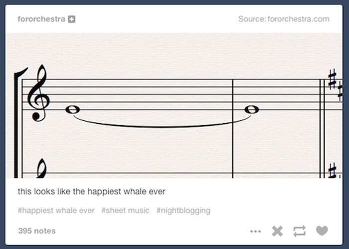 Times When Tumblr Got Weird In A Wonderful Way