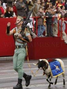 Hilarious Army Photos. Part 2