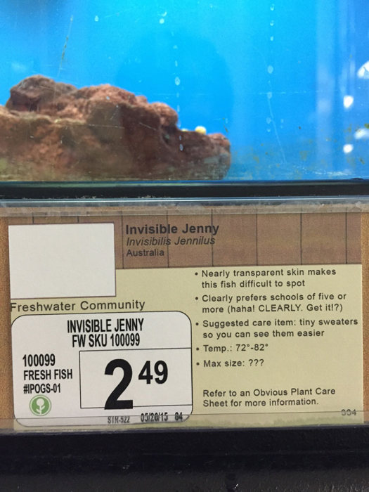 Local Pet Store Gets Hilarious New Labels With New Pet Names