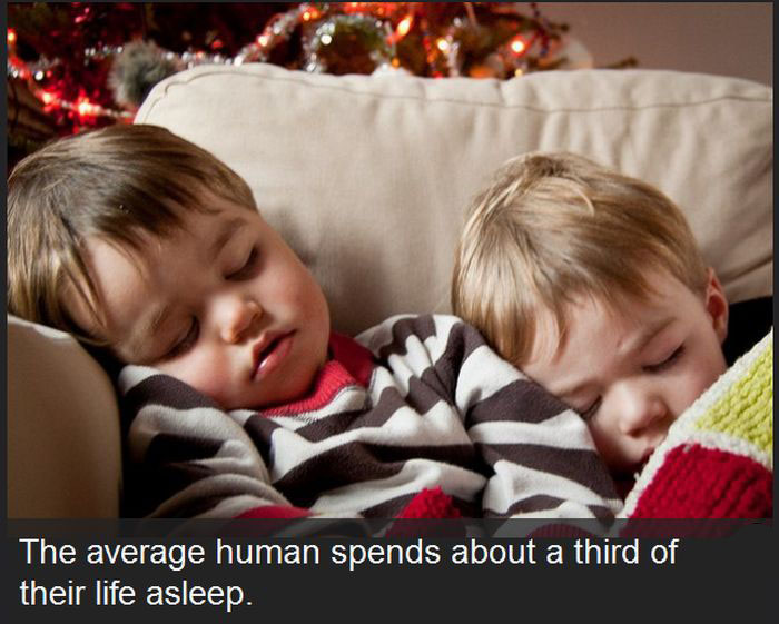 These Facts About The Human Race Might Surprise You
