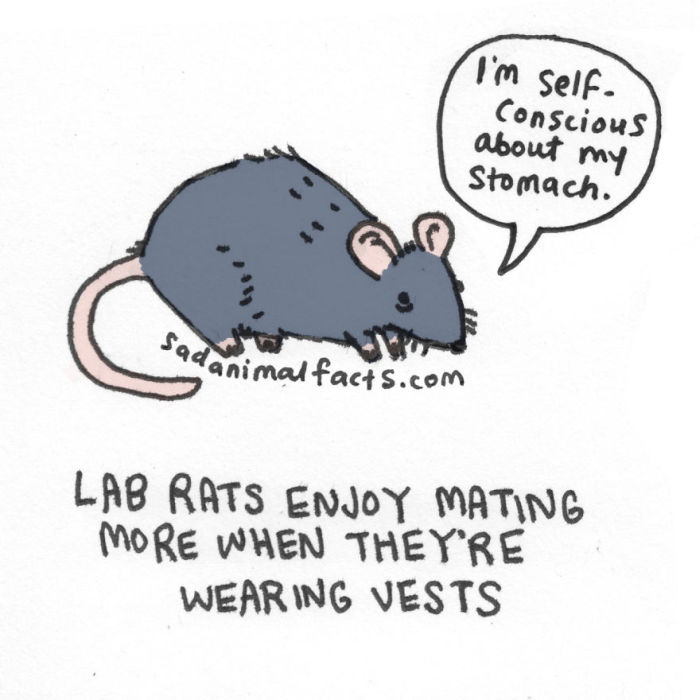 Sad Animal Facts Are Actually Kind Of Adorable