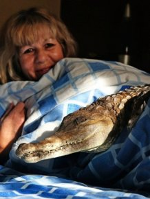 Meet The Woman Who Keeps A Crocodile As A Pet