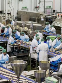Britain's Biggest Sandwich Factory Makes Three Million Sandwiches A Week