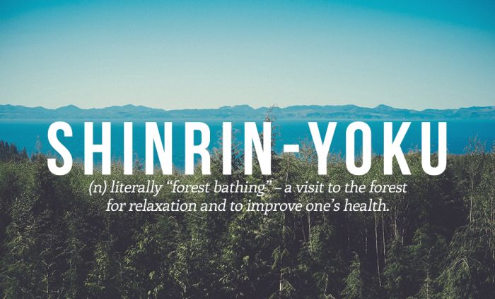 Perfect Japanese Words That We Should All Start Using