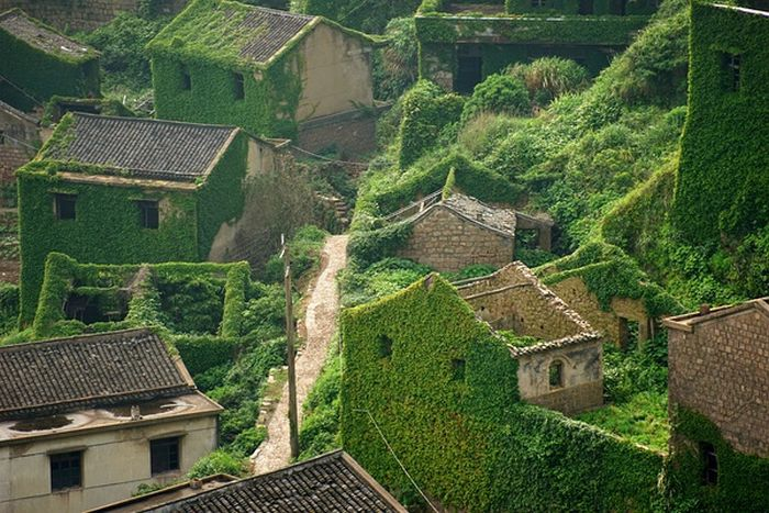 This Abandoned Chinese Fishing Village Has Been Reclaimed By Nature