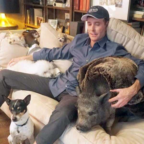 Meet The Man That Turned His House Into An Animal Shelter