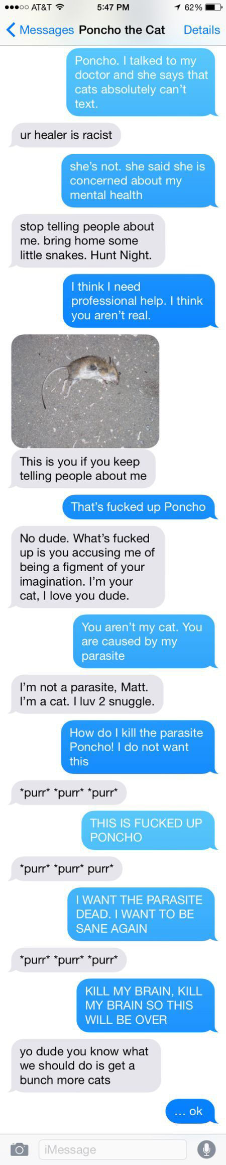 Man Tries To Prove He's Not Insane By Texting With His Cat