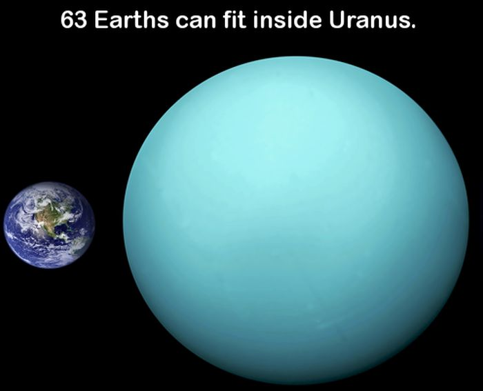 20 New And Interesting Facts For Your Brain To Chew On