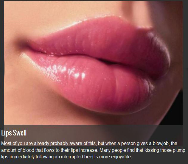 10 Interesting Facts Everyone Should Know About Blowjobs