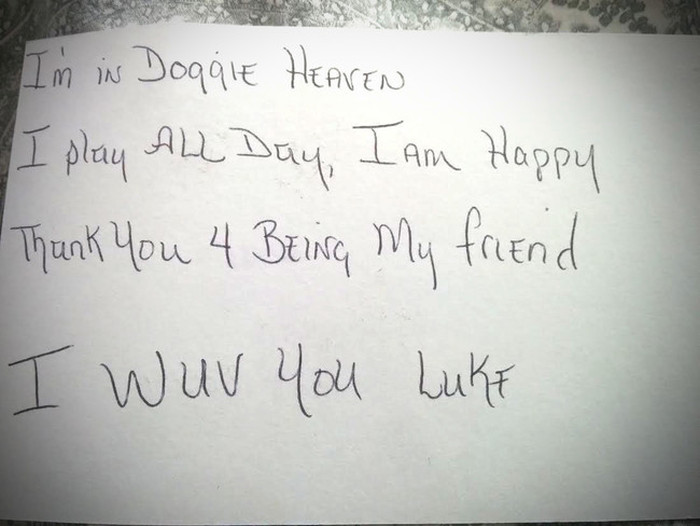 Mother And Son Were Shocked To Receive A Letter From Their Dog In Heaven
