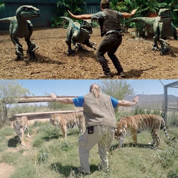 "Zoo Staff Are Re-Creating ""Jurassic World"" With Their Animals"