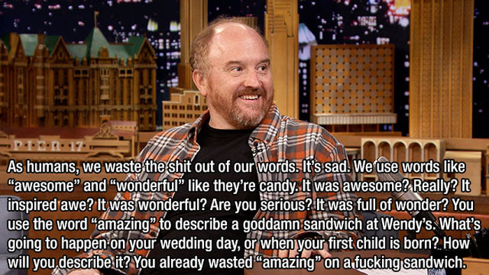 A Tribute To Louis C.K. And His Awesome Sense Of Humor