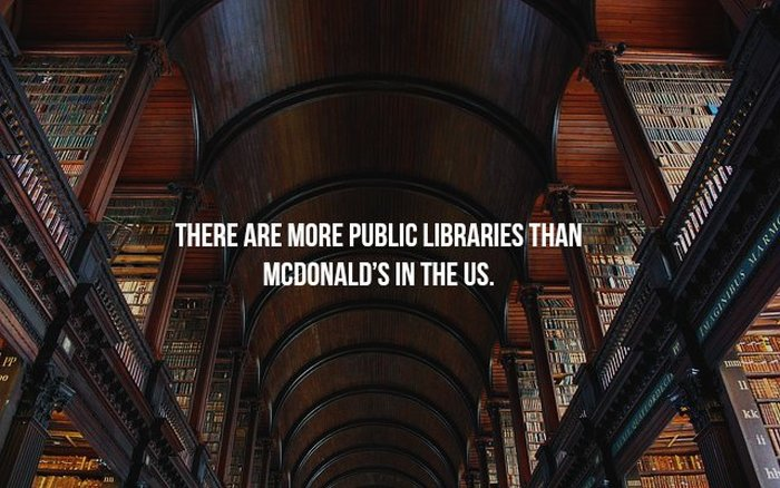 Thoughts And Facts That Will Blow Your Mind With One Sentence