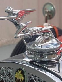 Car emblems on the hood