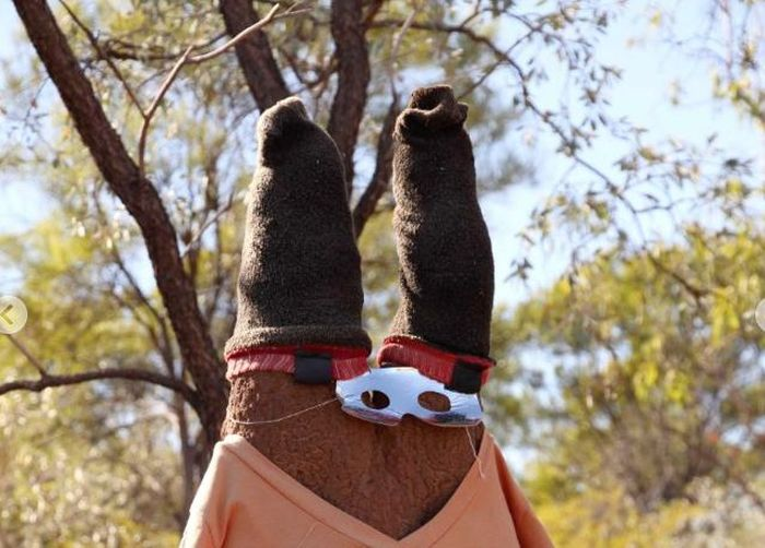 Australian Citizens Are Dressing Up Termite Mounds In Funny Costumes