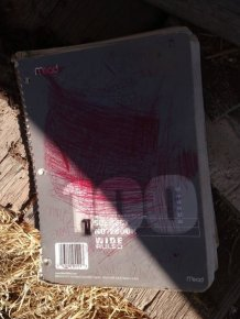 Guy Uncovers Book Full Of Bizarre Messages While Cleaning His Parent's House
