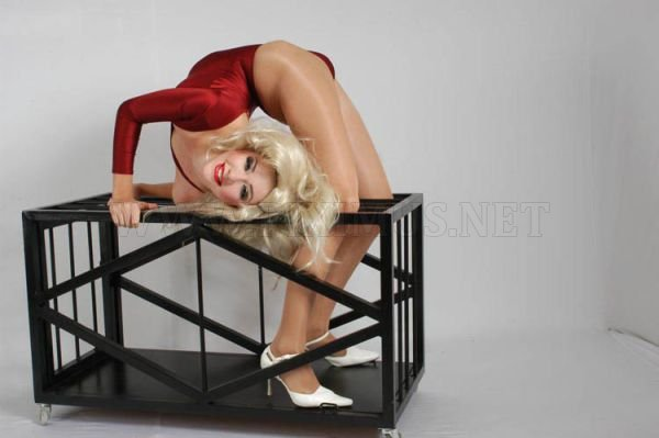 Flexible Zlata