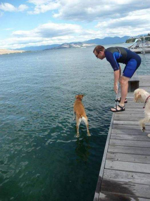 Perfectly Timed Photos, part 3