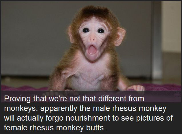10 Disturbing Facts You'll Never Forget
