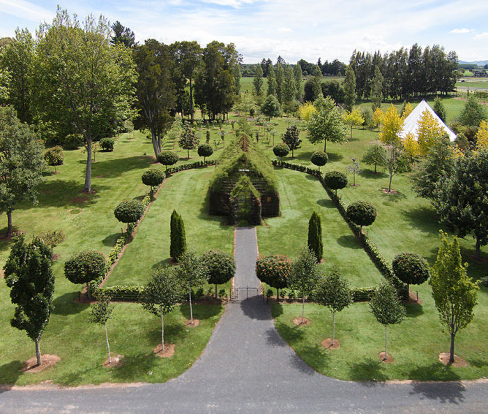 Man Spends 4 Years Growing A Live Tree Church In New Zealand