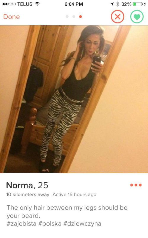 Tinder Profiles That Waste No Time Getting To The Point
