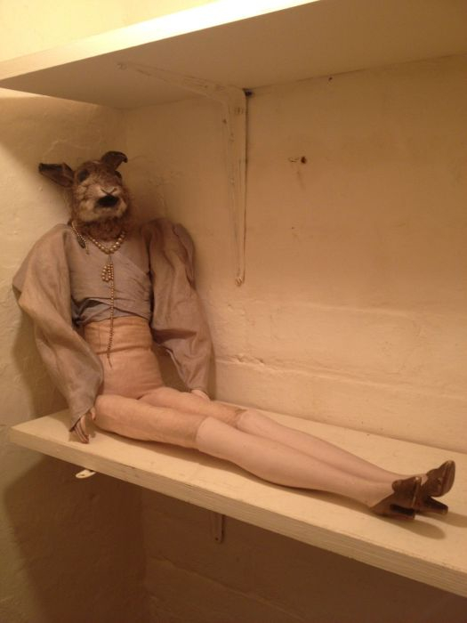 Taxidermied Animals That Will Make You Say WTF?
