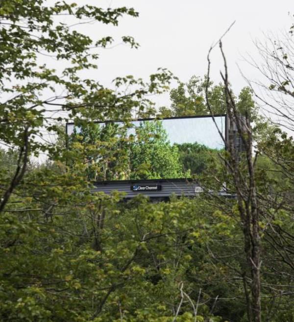 Man Brings Nature To The Masses Using Digital Billboards