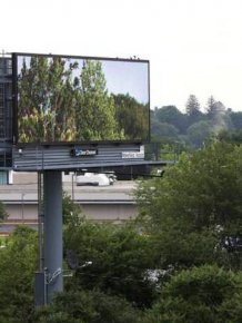 Man Brings Nature To The Masses Using Digital Billboards