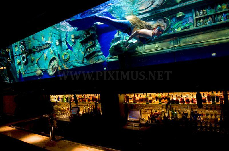 Mermaids in Bar