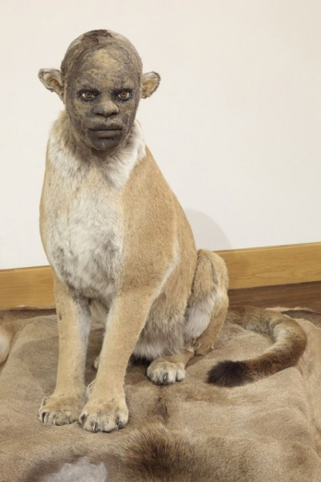 Taxidermy With Human Faces Is Terrifying