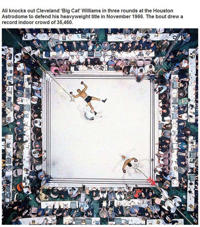 Incredible Pictures That Captured Unforgettable Sports Moments