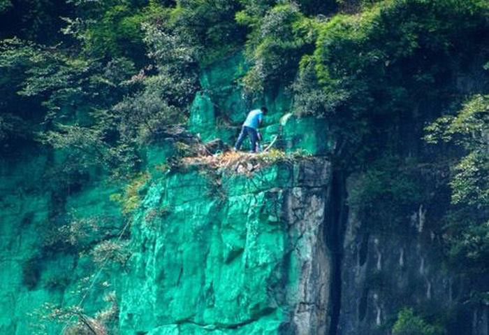 Man Hires Workers In China To Paint A 900 Foot Cliff Green