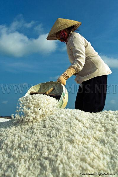 How Salt is Extracted