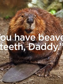 19 Times Kids Said Something Terrible About Their Parent's Appearance