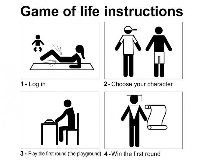 Instruction Manual For The Game Of Life Others