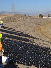California Is Using Shade Balls To Conserve Their Water Supply