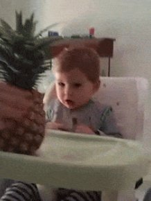 16 Awesome Gifs Of People And Things Scaring Kids
