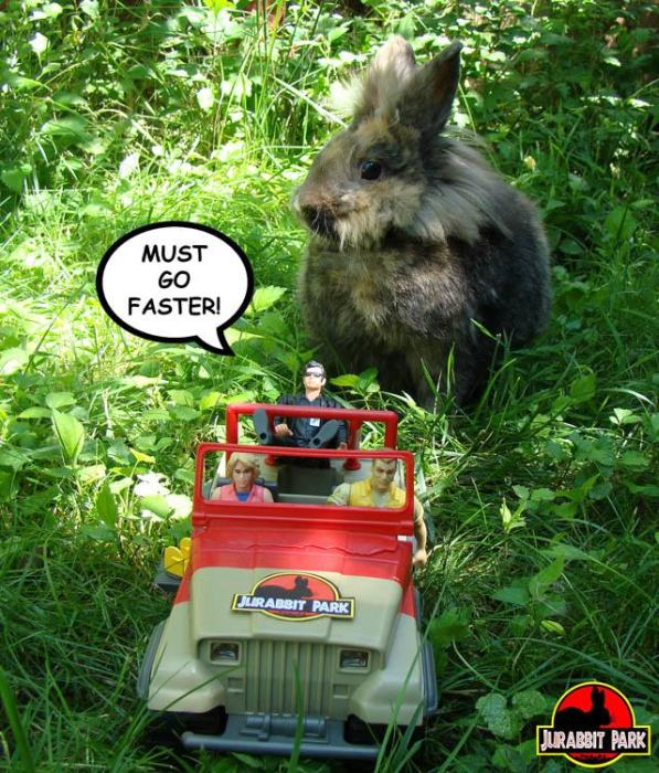 Jurabbit Park Recreates Famous Scenes From Jurassic Park Using A Rabbit