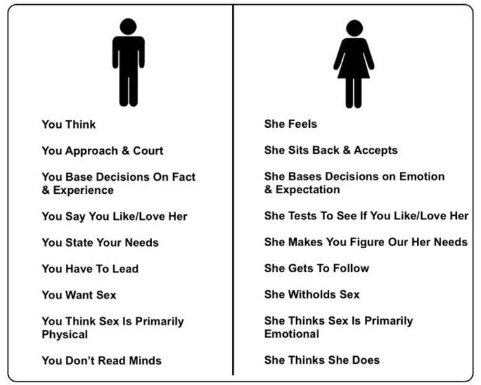 Pictures That Reveal The Obvious Differences Between Men And Women