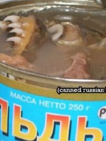 WTF Canned Food