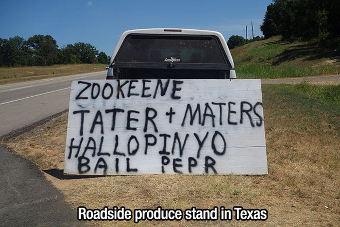 Everything's Bigger And A Whole Lot Crazier In Texas