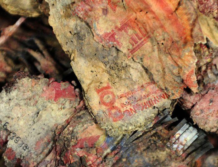 Rotten Cash After 4 Years Underground