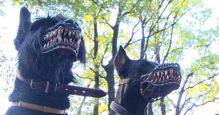 Scary Muzzle That Turns Any Dog Into A Beast