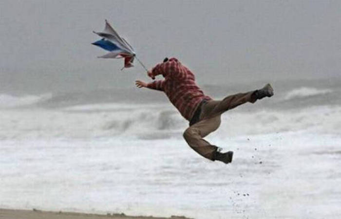 Blown By The Wind