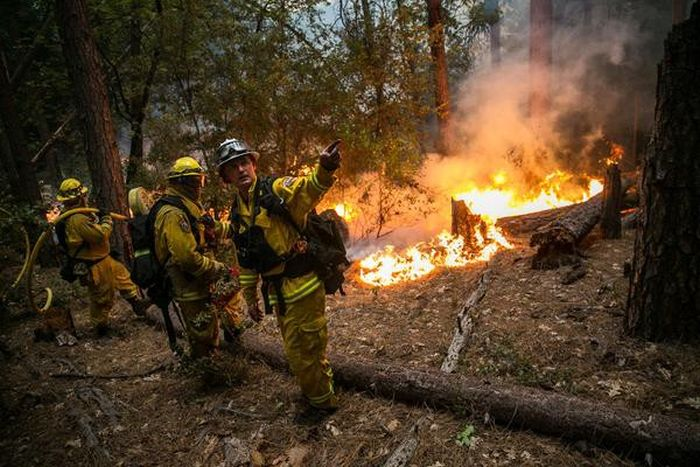 Wildfires Have Turned California Into A State Of Emergency