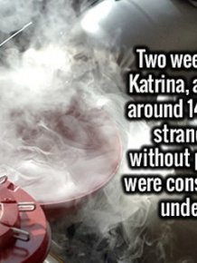 Here's A Healthy Dose Of Random Facts To Feed Your Brain