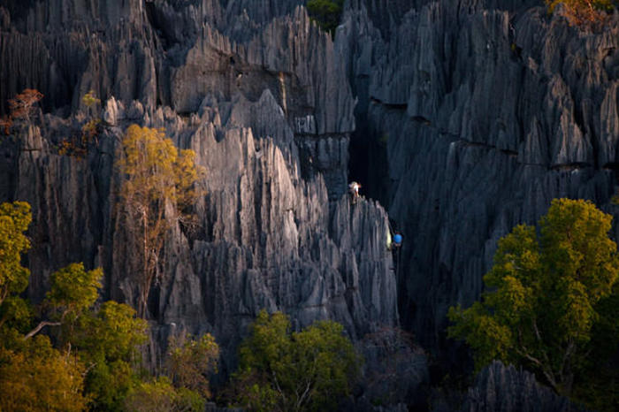 Madagascar's Limestone Towers Are Completely Awe Inspiring