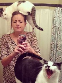 You Can Always Count On A Cat To Invade Your Personal Space