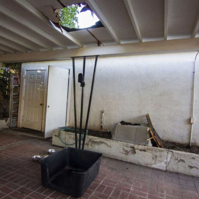 Giant Bundle Of Weed Comes Crashing Through A Family's Roof